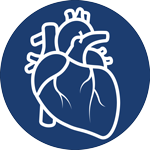Cardiology-icon-01